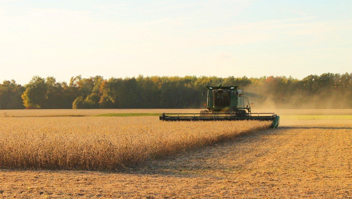 harvester-harvest-farming-soybean-sunset-agriculture-equipment-landscape